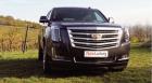 """""""great again"""" mit der US-Ikone Cadillac Escalade – jetzt auch in Österreich"""
